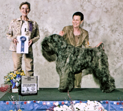 Webber - 1st in 6-9 puppy class at the ABdFC National Specialty 2006